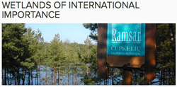 ramsar-wetlands-of-int-import